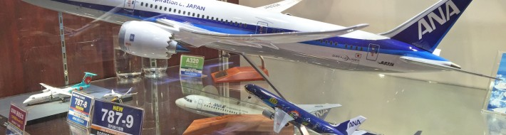 Lovely 1/100 scale ANA 787-9 Pacmin model on offer at the ANA FESTA shop