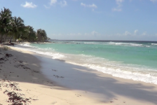 Henry Tenby visit to Barbados June 2014